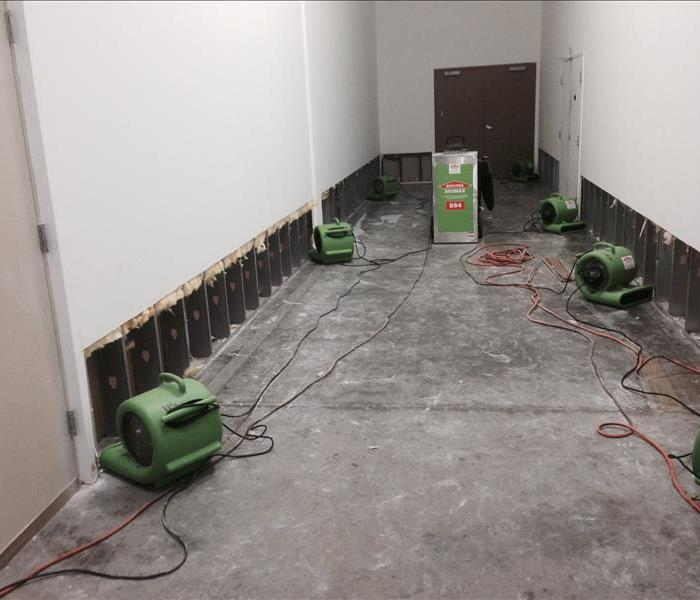 Mold Cleaning in Geneva Facility After