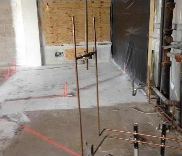 Why SERVPRO What You Need To Know About Commercial Mold-Removal Regulations