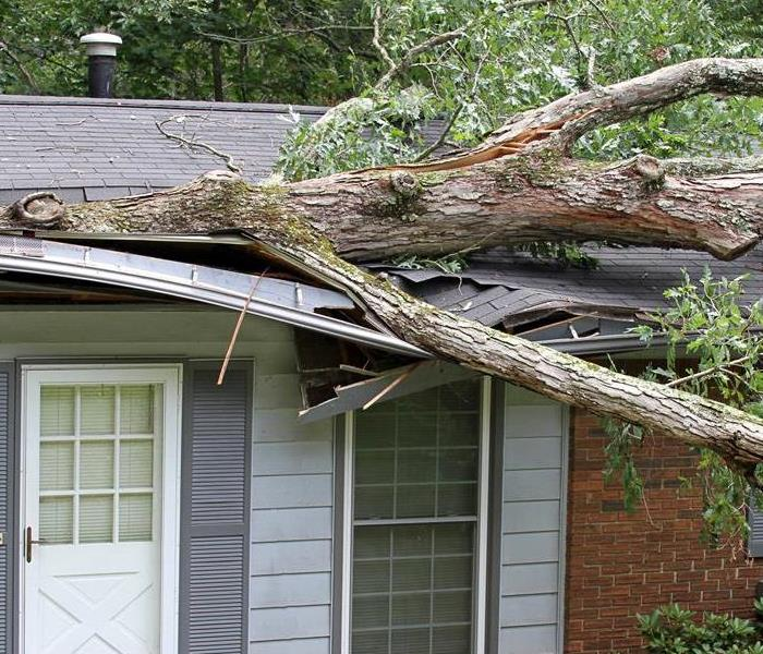 Storm Damage How FEMA Can Help After a Storm