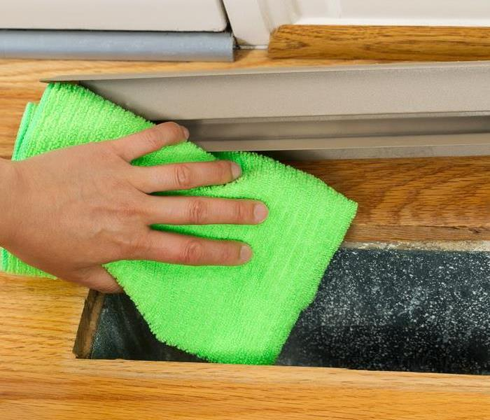 Mold Remediation Timely Intervention: The Key to Mold Prevention