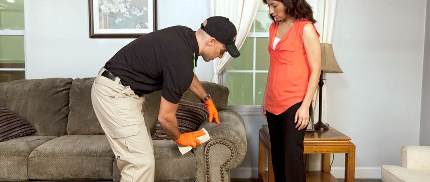 St. Charles, IL carpet upholstery cleaning